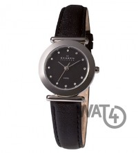 Часы SKAGEN Leather 107SSLB