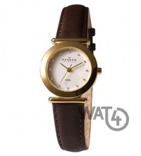 Часы SKAGEN Leather 107SGLD