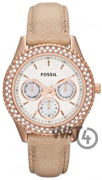 Часы FOSSIL Freestyle ES3104