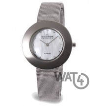 Часы SKAGEN Border Ring 569STW