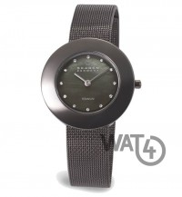 Часы SKAGEN Border Ring 569STTM