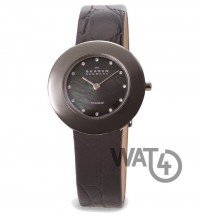 Часы SKAGEN Border Ring 569STTLB4