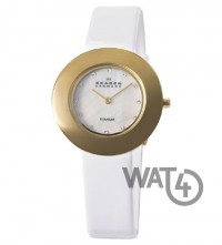 Часы SKAGEN Border Ring 569STGLW